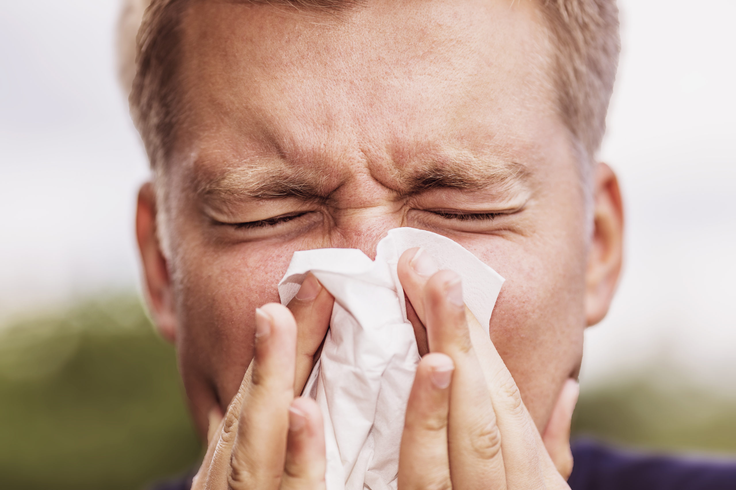 Man sneezing due to hay fever